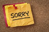 sorry apology - black ink handwriting on an orange sticky note