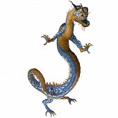 Gold Blue Dragon