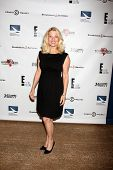 LOS ANGELES - SEP 19:  Barbara Niven at the Heller Awards 2013 at Beverly Hilton Hotel on September