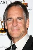 LOS ANGELES - SEP 20:  Scott Bakula at the Emmys Performers Nominee Reception at  Pacific Design Cen