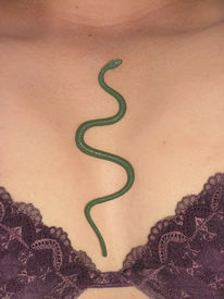foto of titillation  - snake crawling out of woman - JPG