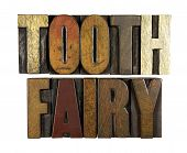 stock photo of tooth-fairy  - The words TOOTH FAIRY written in vintage letterpress type - JPG