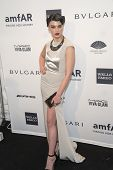 NEW YORK-FEB 5: Model Crystal Renn attends the 2014 amfAR New York Gala at Cipriani Wall Street on F
