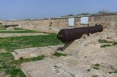 Old Guns On Acre Walls