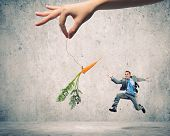 stock photo of bribery  - Funny image of businessman chased with carrot - JPG