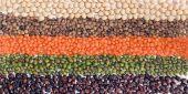 Legumes Flag