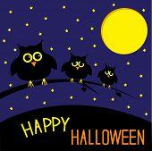 Three Cute Owls. Starry Night And Moon. Happy Halloween Card.