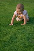 baby with funny face on grass