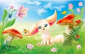 foto of fairy-mushroom  - fairy happy baby fox on green grass with mushrooms and flowers - JPG