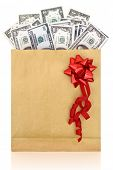 Dollar banknotes in a paper bag with red bow on white background