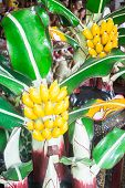 Colorful Handmade Artificial Banana Tree