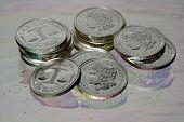 Shiny Silver Dollars