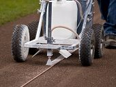 Preparing The Baseball Field With The Line Marker