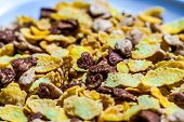 Plate with mixed cornflakes with milk.
