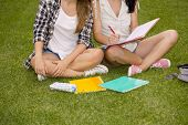 Tennage students sitting on the grass and study together