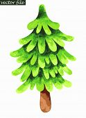 Single fir tree. Watercolor painting. Vector illustration