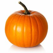 foto of harvest  - Pumpkin on white background - JPG