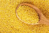 pic of millet  - millet on a wooden spoon - JPG