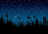 foto of shooting star  - A CMYK illustration of meadow flowers silhouettes on night sky background with a shooting star - JPG
