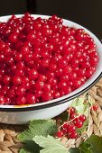 Red Currant Berries In A Large Bowl  And A Bunch Of Currant Close.