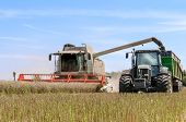 stock photo of combine  - combine harvester overturning cereals in a tractor truck - JPG