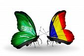 Two Butterflies With Flags On Wings As Symbol Of Relations Saudi Arabia And Chad, Romania