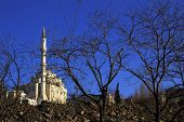 New White Mosque