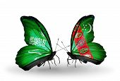 Two Butterflies With Flags On Wings As Symbol Of Relations Saudi Arabia And Turkmenistan