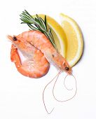 Delicious shrimps on a white background