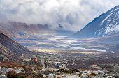 Hiking group on a trail.  Nepal, Himalayas