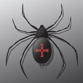 pic of black widow spider  - Black spider with shadow - JPG