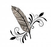 Feather flourish decal isolated