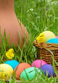 Easter Eggs And Toy Chicks In The Grass