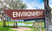 Environment wooden sign with rural background