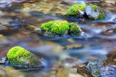 Stones in water of mountain stream