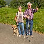 Happy senior couple with dog in nature holding thumbs up