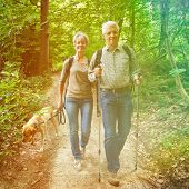 Two happy senior people walking with dog in a forest