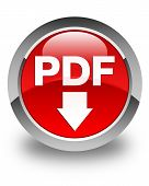 Pdf Download Icon Glossy Red Round Button