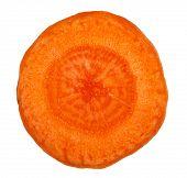 Carrot slice