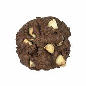 Chocolate Cookie With Macadamia Isolated On White