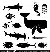 Set of various sea animal icons: Whale, hammerhead shark, swordfish, piranha, seahorse, fish. Vector illustration.