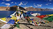 Buddhist Prayer Flags Flying At Pangong Lake, Ladakh, India