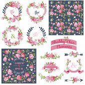 Vintage Floral Set - Frames, Ribbons, Backgrounds - for design and scrapbook - in vector