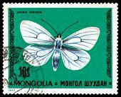 Vintage  Postage Stamp. Butterfly Aporia Crataegi.