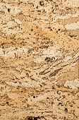 Cork Texture. Background. Closeup