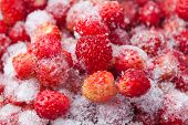 Frozen Strawberries. Strawberry. Macro View.