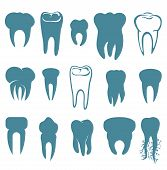Human teeth set