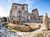 Ninfeo Elíptico. Domus Flavia At Palatin In Rome