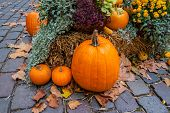 Halloween Ornament At Autumn