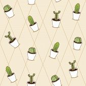 stock photo of spiky plants  - Cactus plants texture seamless pattern background - JPG